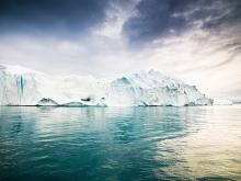 Belissima-Eqology-Pure-Arctic-Oil